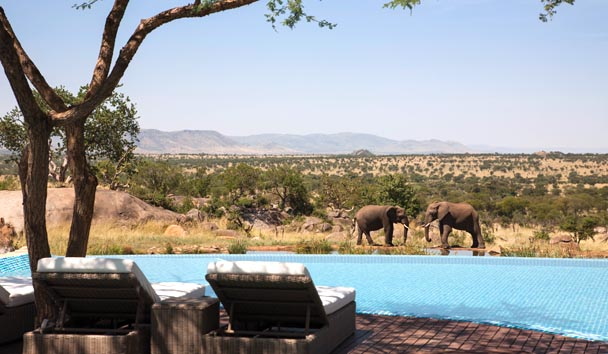 Four Seasons Safari Lodge, Serengeti: Outdoor Pool