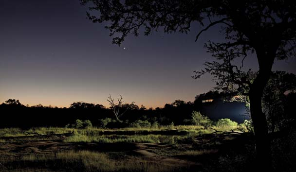 Leopard Hills Private Game Reserve: View