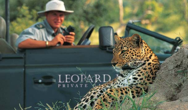 Leopard Hills Private Game Reserve: Wildlife