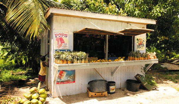 Local fruit stall on Fig Tree Drive