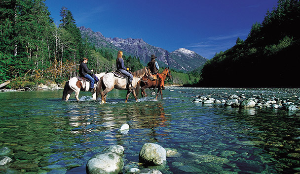 Clayoquot Wilderness Resort: Horse Riding Activity