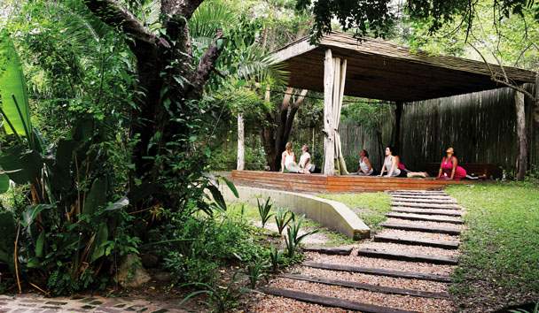 Londolozi Private Game Reserve: The Yoga Deck
