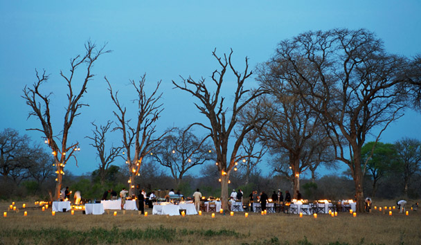 Londolozi Private Game Reserve: Evening Bush Dinner