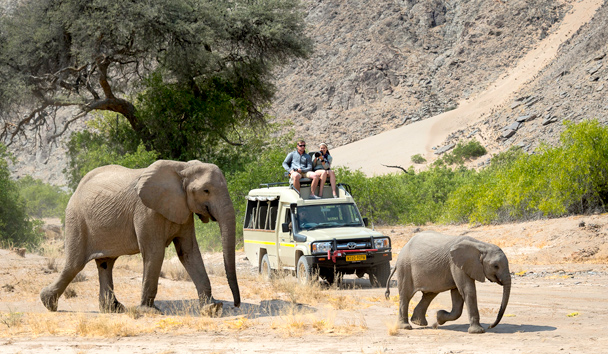 Hoanib Skeleton Coast: Game Drives