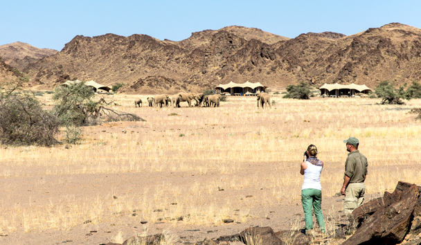 Hoanib Skeleton Coast: Elephant Encounters