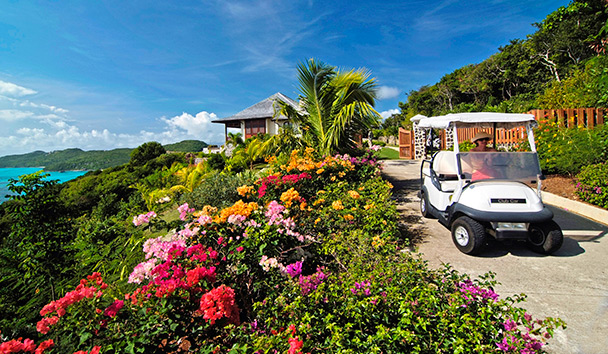 Maison Tranquille: Golf Cart