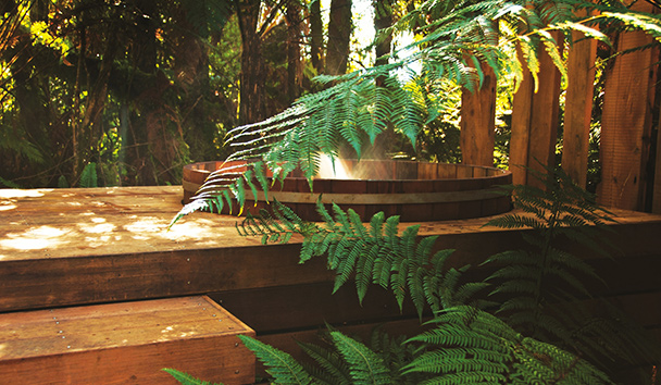 Treetops Lodge & Estate: Hot Tub