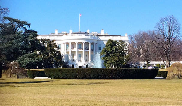 Caroline's image of The White House