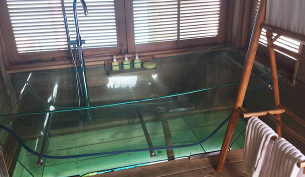 Jess' picture of the glass bottom bath at one of the Water Villas at Six Senses Laamu