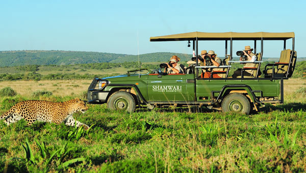 South Africa Safari Shamwari