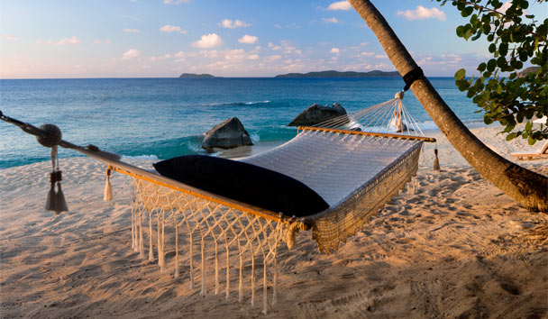 Valley Trunk: Hammock on the beach