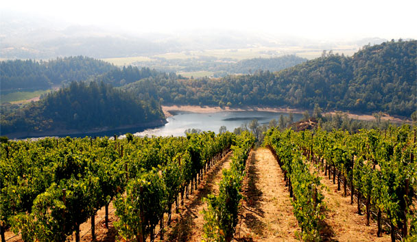 California Uncovered: Napa Valley is not to be missed