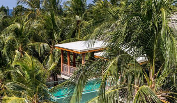 Amilla Fushi: Wellness Tree House