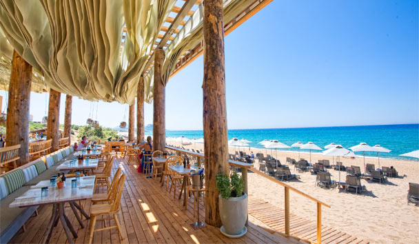 Uncover the greatness of Greece: Barbouni Restaurant