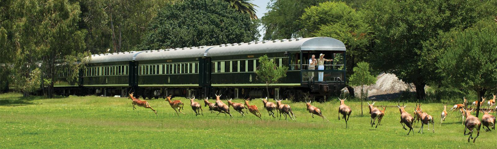 Rovos Rail – A Luxurious Rail Journey in South Africa