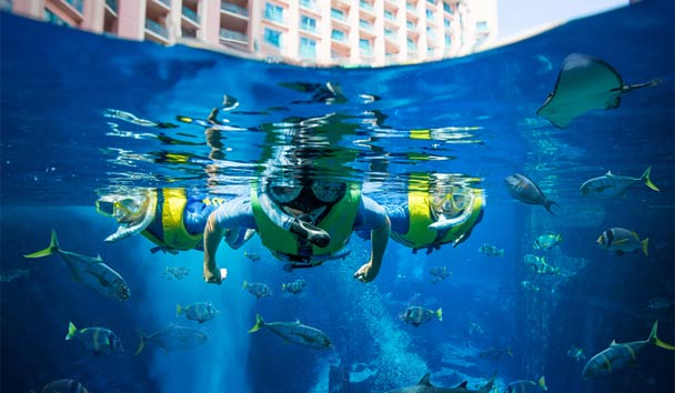 Last Minute Luxury: Atlantis, The Palm