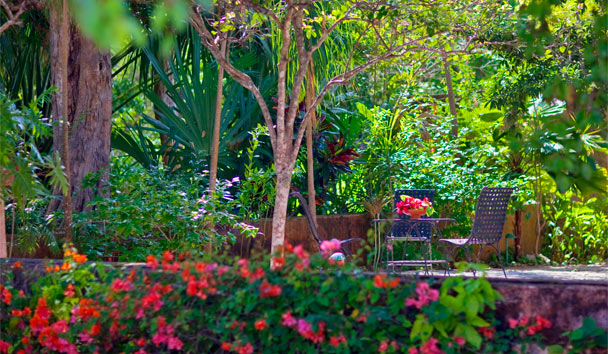 Hacienda Santa Rosa, a Luxury Collection Hotel: Gardens