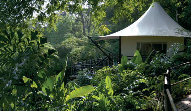 Four Seasons Tented Camp Golden Triangle: Tented Camp Exterior