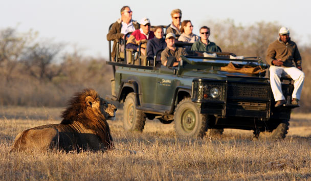 Savanna Private Game Reserve: Game Viewing