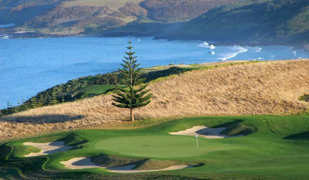 Kauri Cliffs: Hole 17 with Norfolk Pine