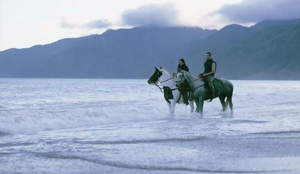 Wharekauhau Country Estate: Outdoor Recreation - Horse Riding on the Beach