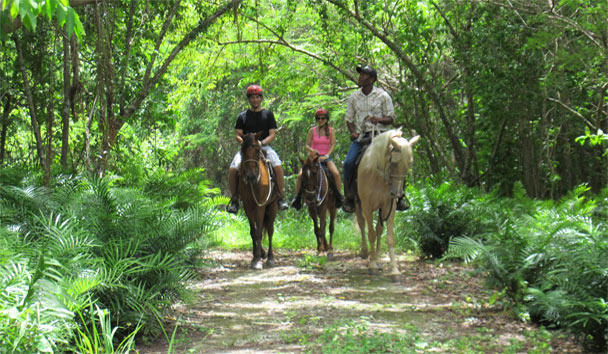 Eden Roc at Cap Cana: Horse Riding in Scape Park