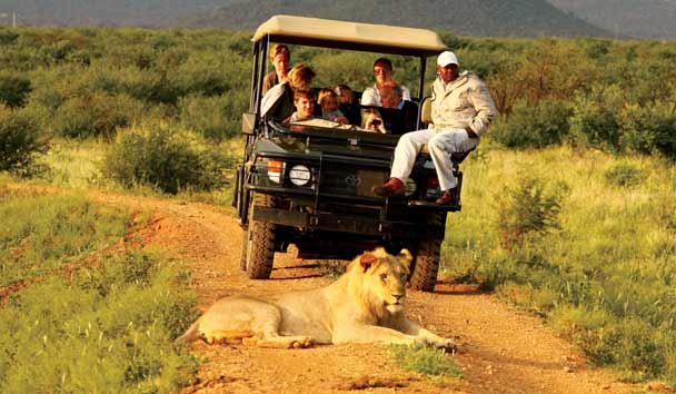 Family Safari, Little Madikwe, South Africa