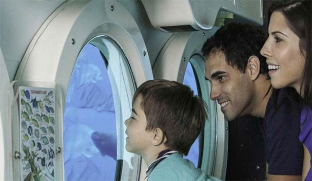 Enjoy an Atlantis submarine experience