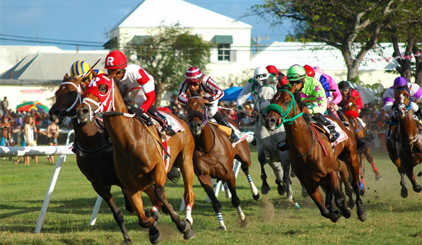 Barbados: Diamond International Day, Horse Racing