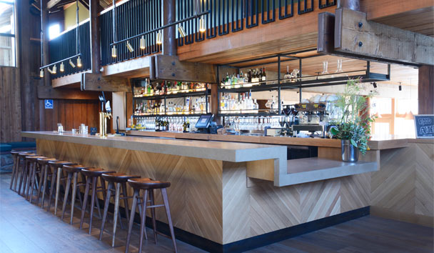Timber Cove: Bar