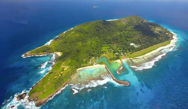 Wildlife in the Seychelles: Fregate Island Private