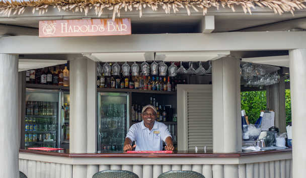 The Sandpiper: Harold's Bar