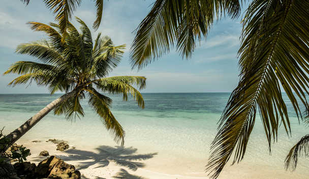 Four Seasons Resort Seychelles at Desroches Island: Beach