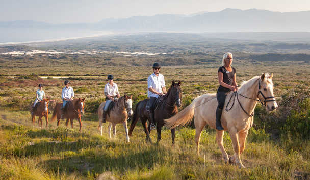 Grootbos: Horse-riding