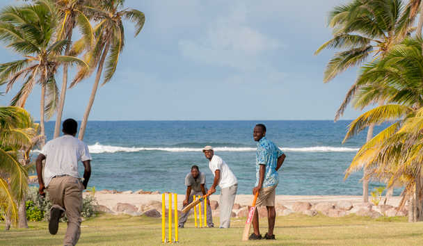 Nisbet Plantation Beach Club: Cricket