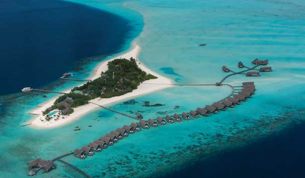 Diving Deep in the Maldives: An Exclusive Interview with a Marine Biologist