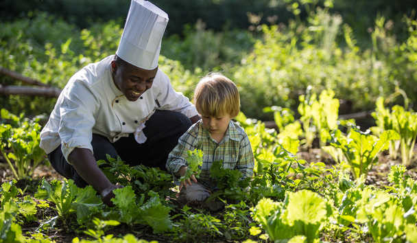 Elewana Arusha Coffee Lodge: Collecting Produce with the Chef