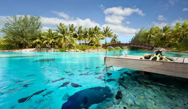 The St. Regis Bora Bora: Private Lagoonarium