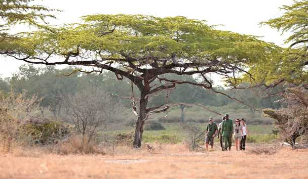 Roho ya Selous: Guided walk