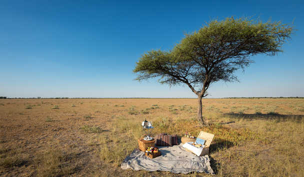 Kalahari Plains Camp: Bush Picnic